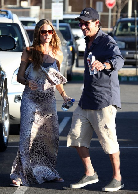 Denise Richards To Play Charlie Sheen&#8217;s Lover in Anger Management