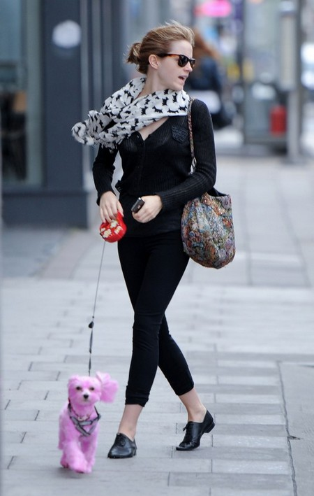 Emma Watson's Pink Pooch Starts Craze (Photo)