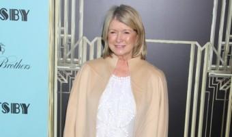 Martha Stewart Wants to Date Liam Neeson