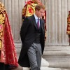 Princess Diana&#039;s Ex-Bodyguard Warns Prince Harry He is Taking Silly Risks With His Life