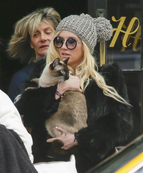 Kesha Wants To Date Harry Styles?