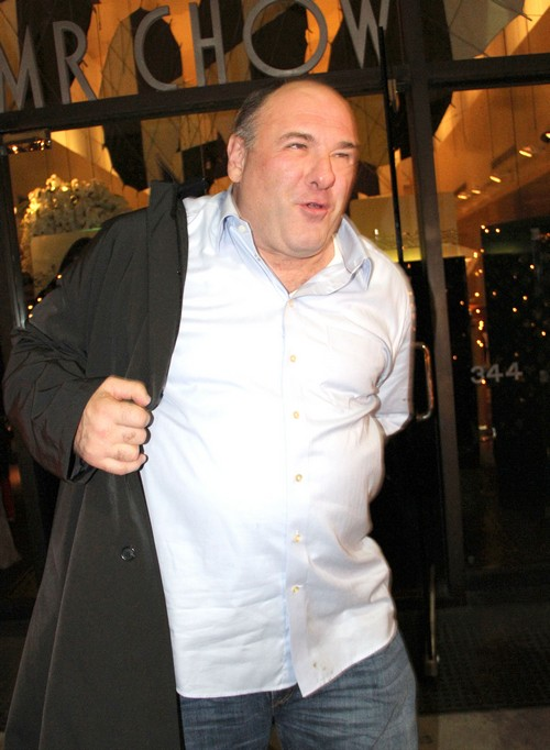 James Gandolfini Needs To Get On The Weight Watchers Plan With Jessica Simpson