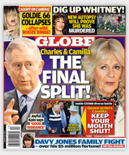 Prince Charles and Camilla Parker Bowles Are Getting A Divorce!