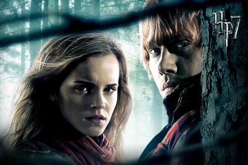 Hermione And Ron Weasley