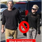 Miley Cyrus and Liam Hemsworth Have Broken Up!
