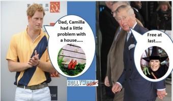 Prince Harry Hates Camilla Parker-Bowles