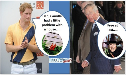 Prince harry hates camilla parker bowles hollywood hiccups