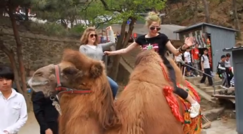 Avril Lavigne Goes Camel Toe in China – VIDEO