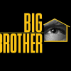 Big Brother 13 - LOGO