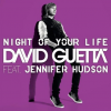David Guetta - night of Your Life FT. JEnnifer Hudson - Cover Art