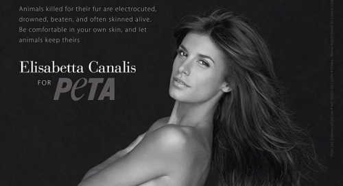 Elisabetta Canalis is Totally Naked For PeTA &#8211; Photos, Video