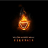 FireBall - Willow Smith Ft. Nicki Minaj Cover Art