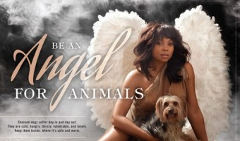 Taraji P. Henson Is An Angel For Animals In New Peta Ad