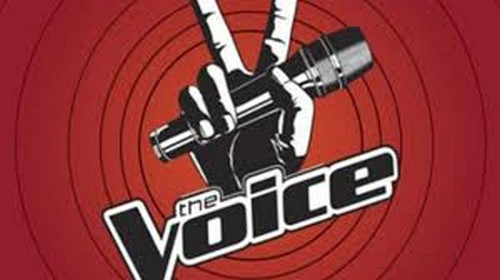 "The Voice Season 4 ""Top 8″ Results Show RECAP 5/28/13"