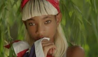 Will Smith And Jada Smith Fighting Over Willow Smith's New 'Sexy' Music Video