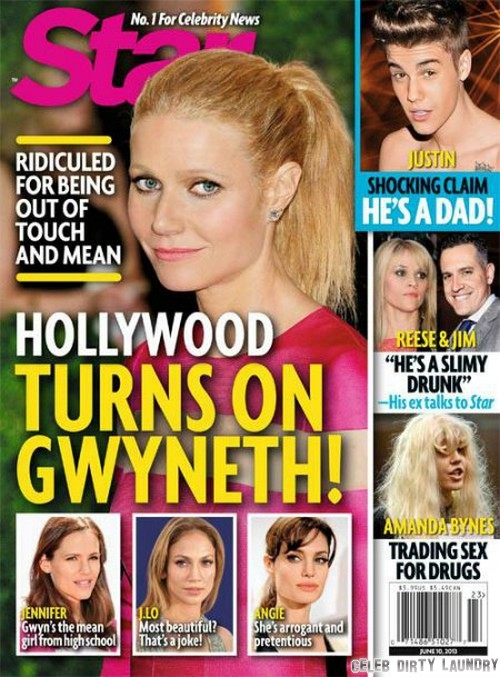 Gwyneth Paltrow Hated By Hollywood (Photo)