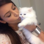 Kim Kardashian Thinks She's Turning Into A Cat Lady, Explains Why She Named Her Kitten After Kanye's Song