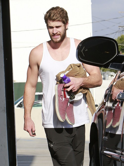 Liam Hemsworth's Brothers Wanted Him To Dump Miley Cyrus