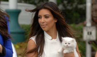 Kim Kardashian's Cat Mercy Dies–Did Kim's Neglect Kill The Cat?
