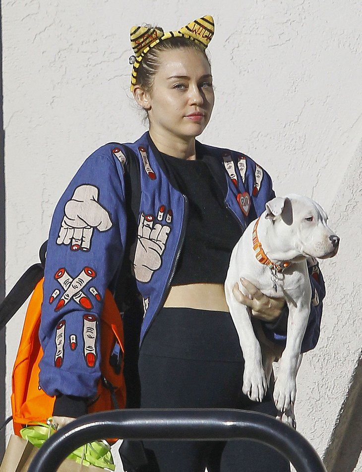 Miley Cyrus Takes Her Dog To The Vet