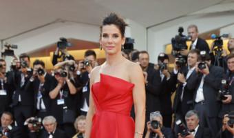 Sandra Bullock And Chelsea Handler Both Vying For Chris Evans' Heart: Who Will He Choose?